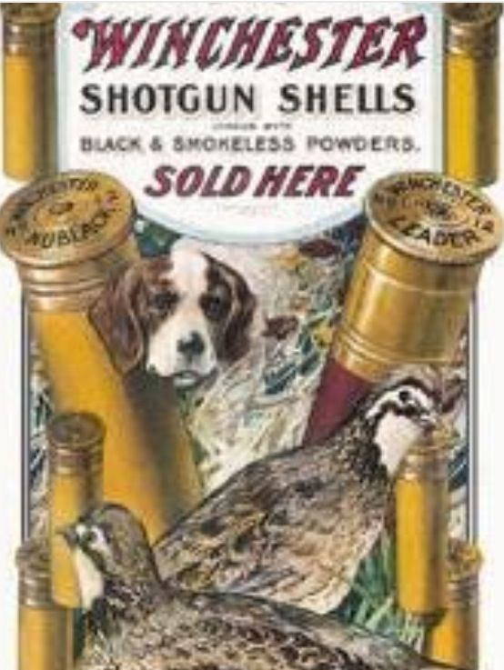 Winchester Dog Quail Shotgun Shells Tin Metal Sign Hunting NEW Made USA