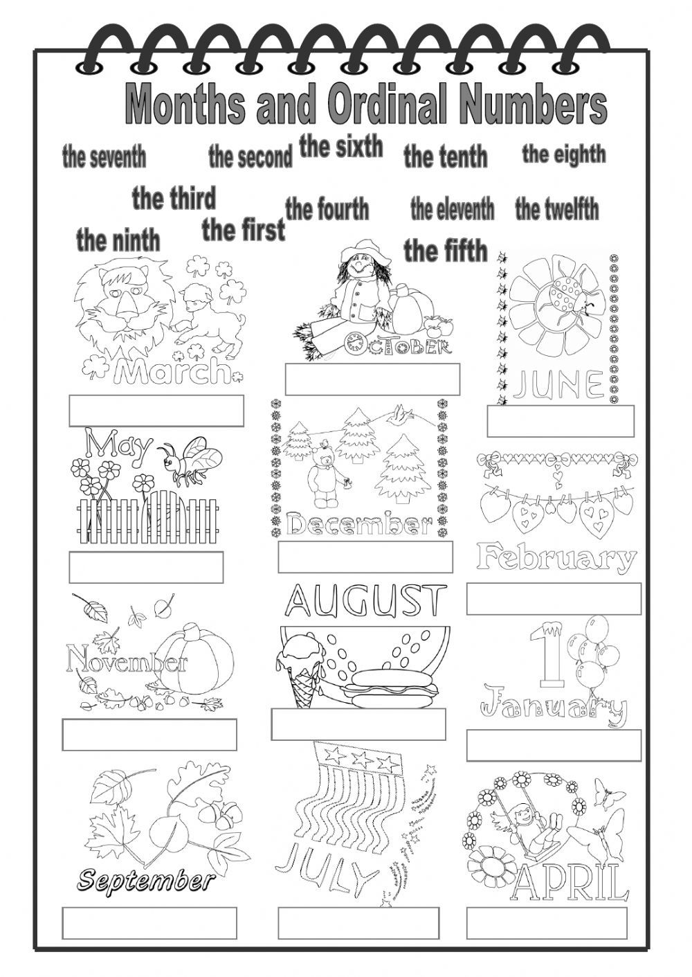 The months of the year interactive and downloadable