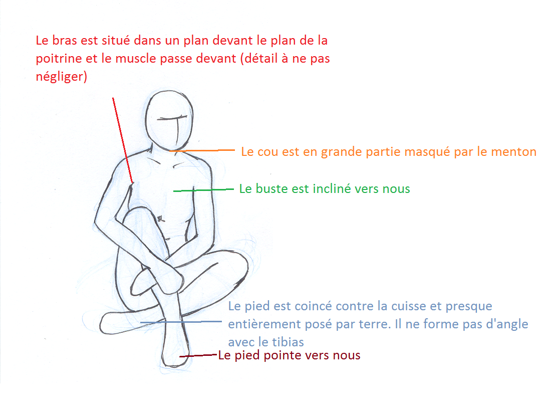 position assise terre dessin