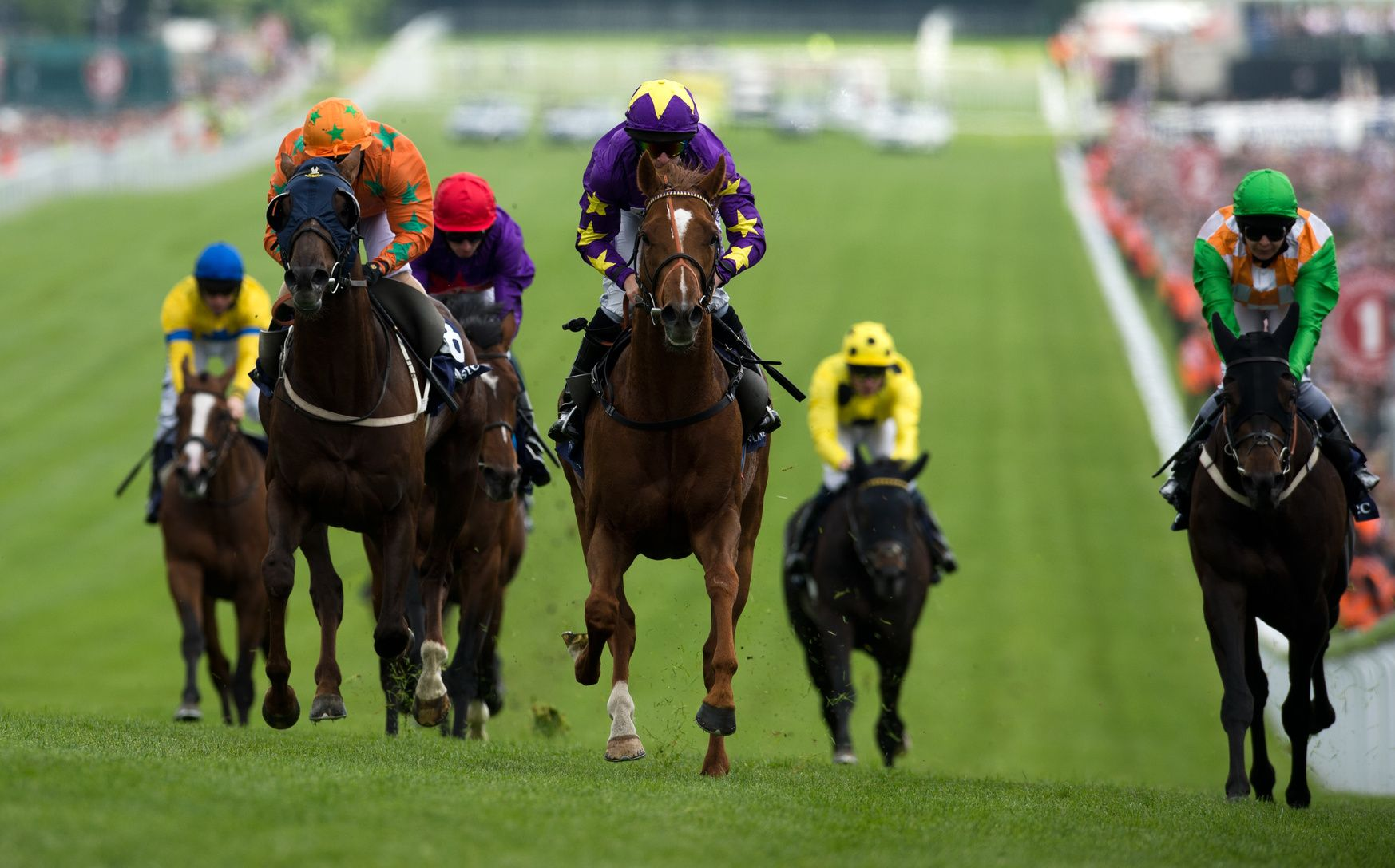 Online betting horse racing free bettingzone