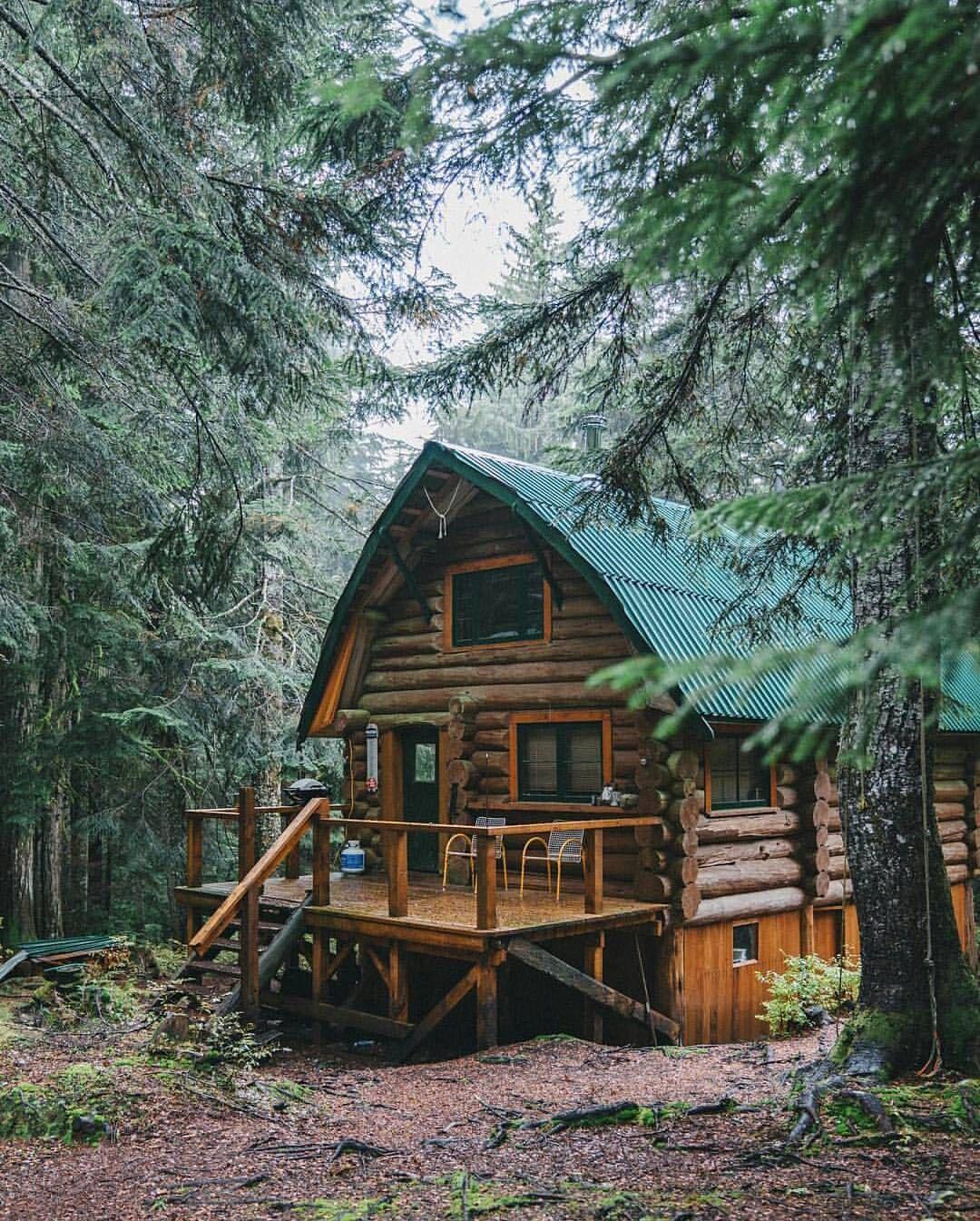 Ein kleines Blockbohlenhaus mit grünes Dach im Wald. Mehr Blockbohlenhäuser können Sie auf https://www.pineca.de/blockbohlenhauser/ finden