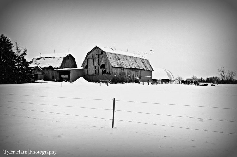 A Old Barn by Tyler Harn on 500px