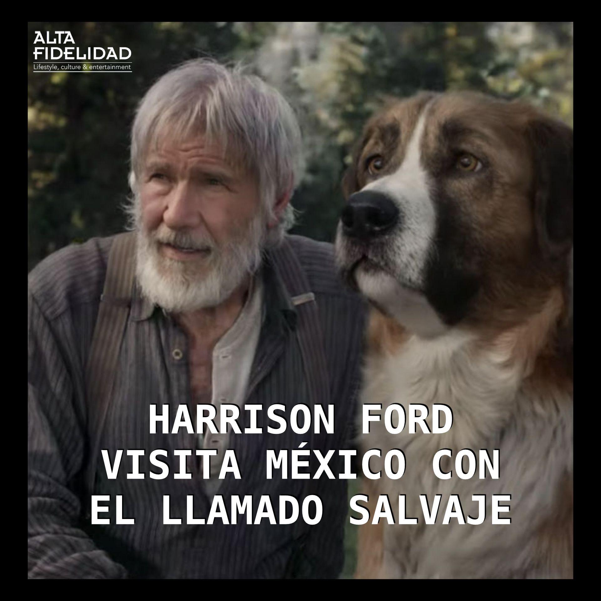 Harrison Ford Y El Llamado Salvaje Harrison Ford Peliculas En Espanol Ford