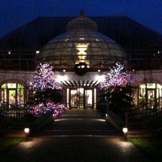phipps conservatory at christmas
