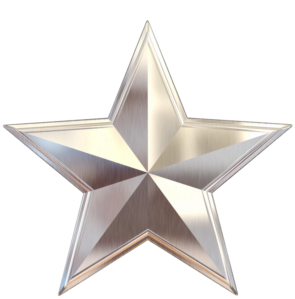 Silver Star Scaled1000 Png 986 215 1000 Logo Pinterest