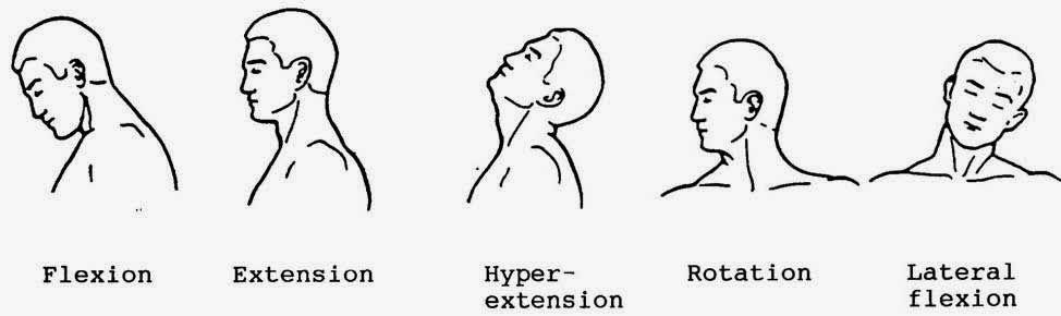 Flexion Extension Hyper-extension Rotation Lateral flexion   neck ...