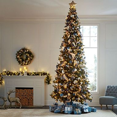 Member S Mark 12 Ellsworth Fir Christmas Tree Sam S Club Fir Christmas Tree Christmas Tree 12 Ft Christmas Tree