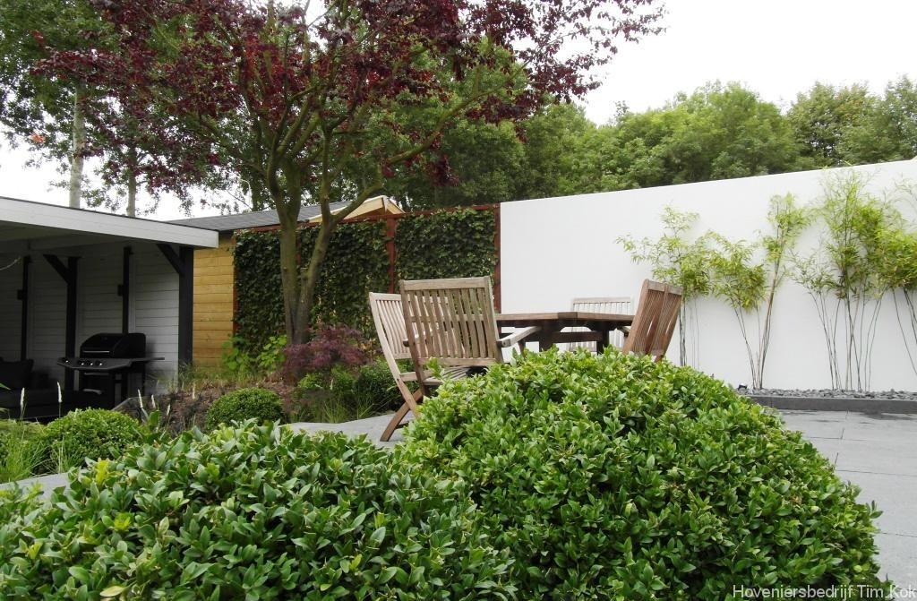 Tuin inspiratie met zwemvijver tuin ideeen tuin ontwerp