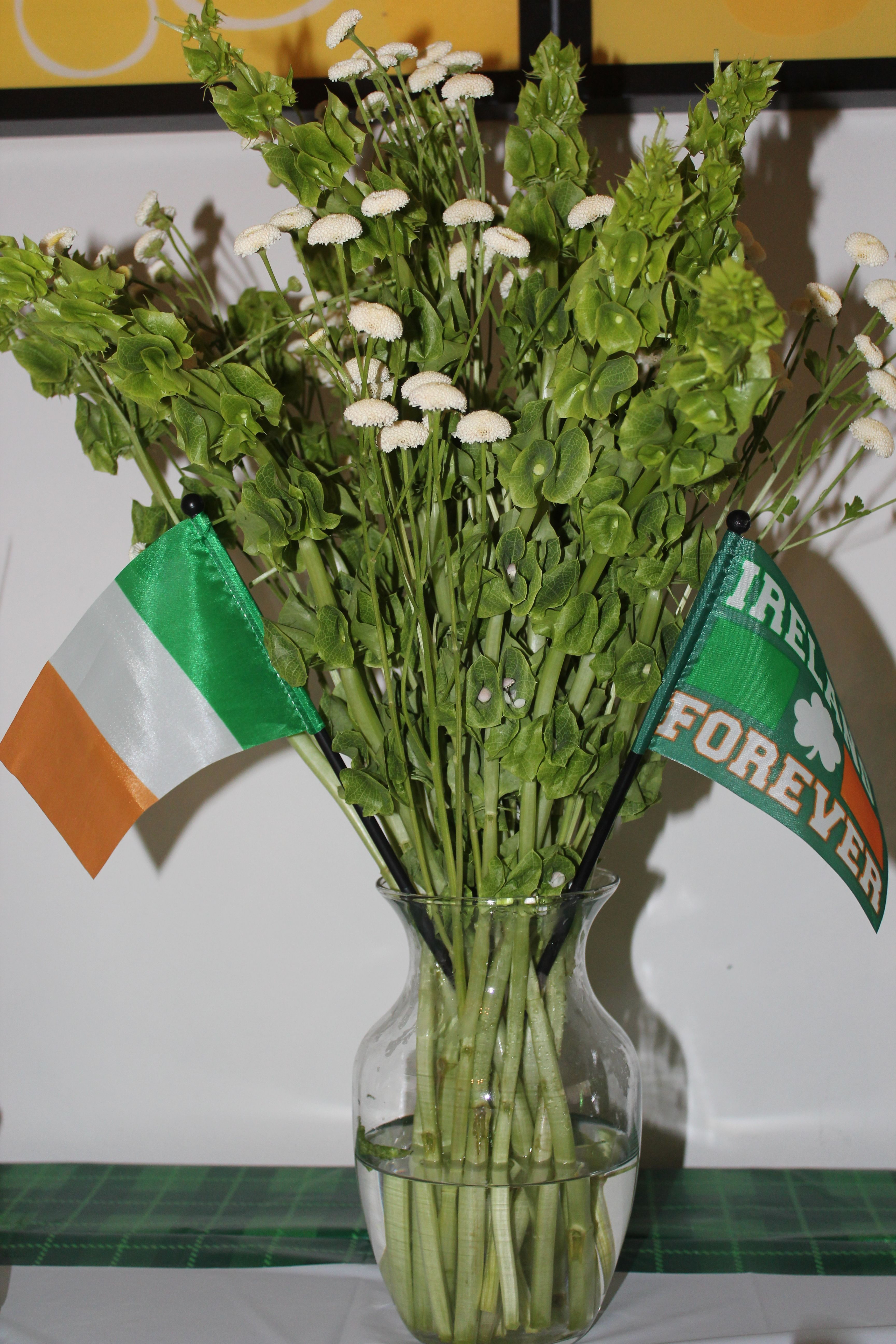 My st pattys day centerpiece bells of ireland little white pattys day centerpiece bells of ireland little white flowers i dont remember the name but i liked they were little balls irish pride flags bought a mightylinksfo
