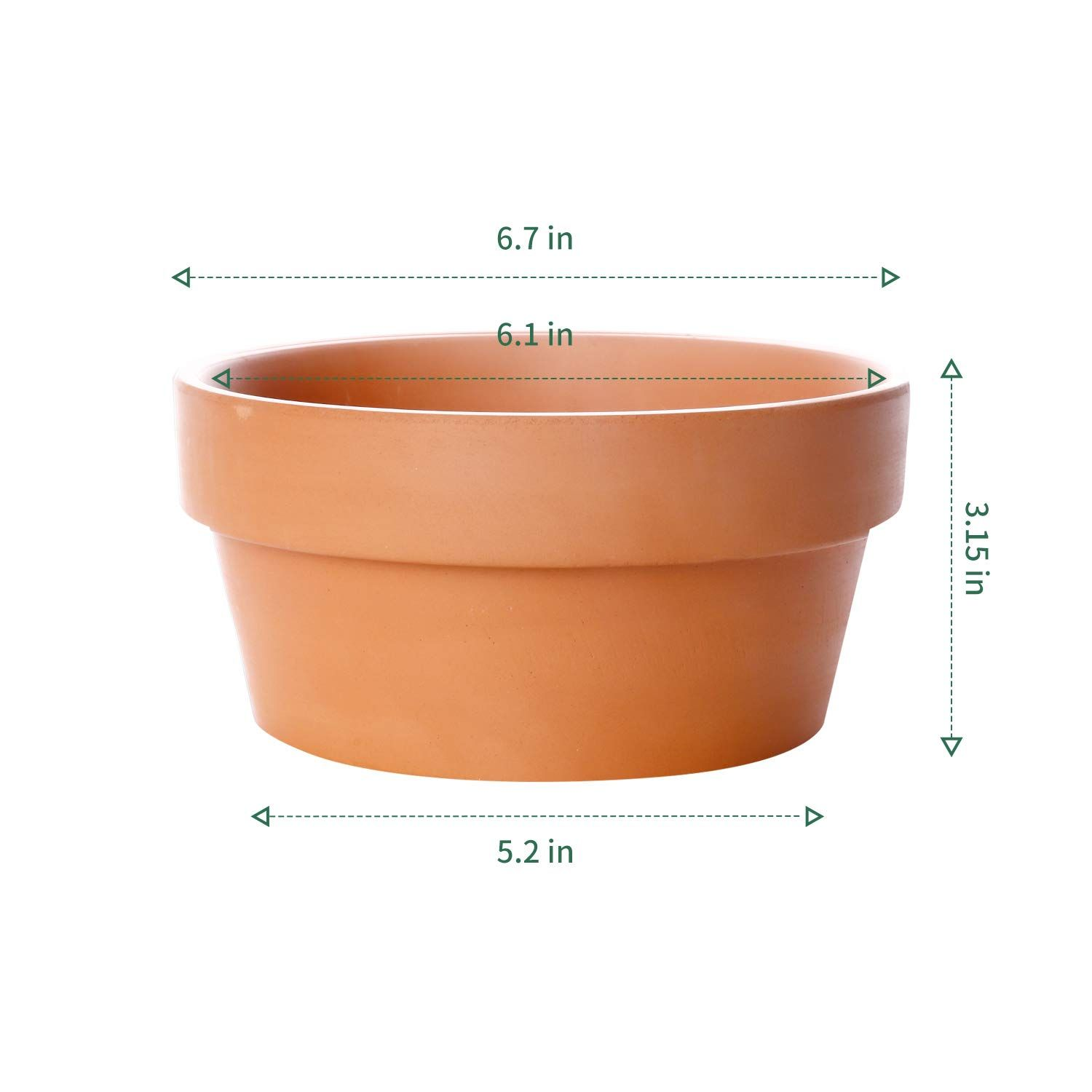 Potey Terracotta Shallow Planters For Succulent 6 1 Inch Cactus Plant Containers Indoor Garden Bonsai Pots Wi In 2020 Bonsai Garden Container Plants Shallow Planters