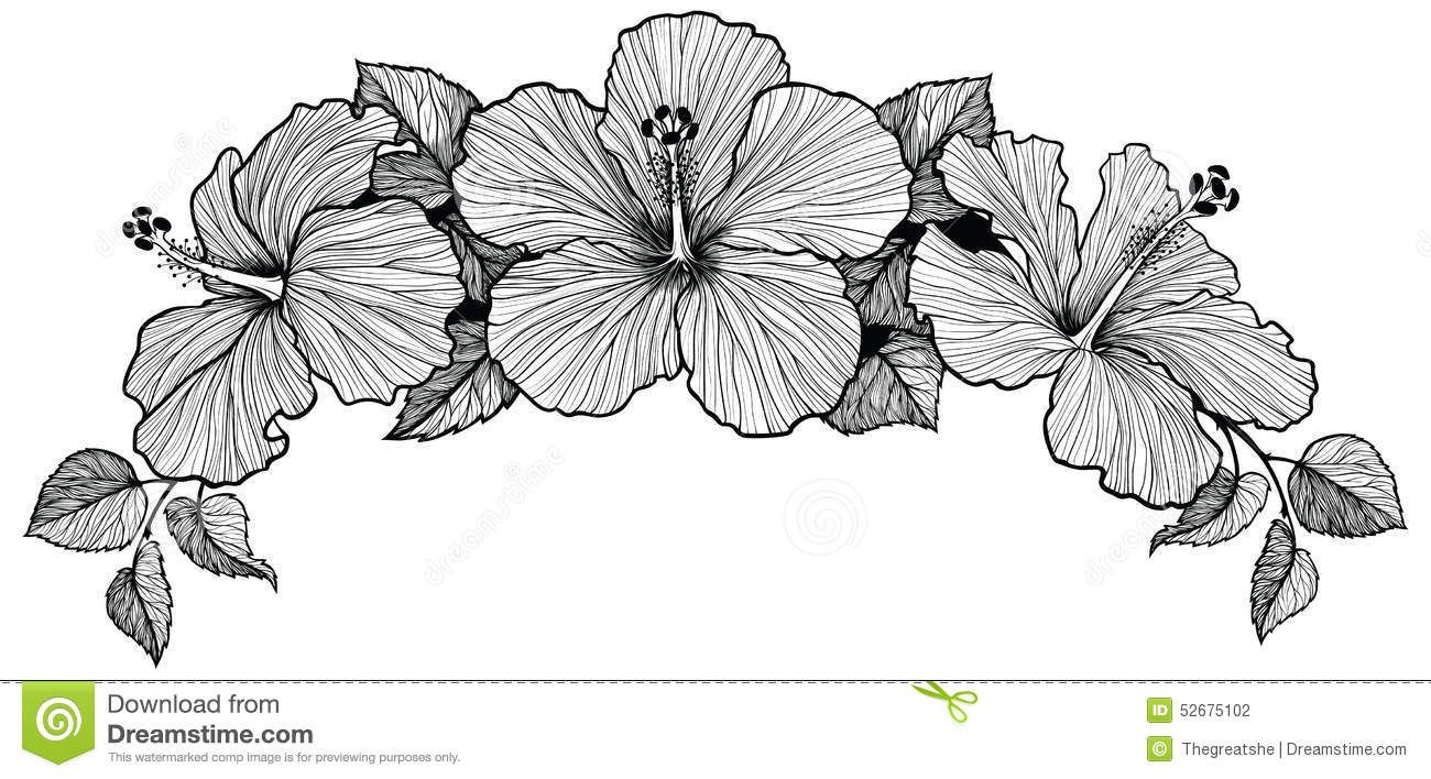 Line Art Hibiscus : Black and white vector flower wreaths bouquet of three