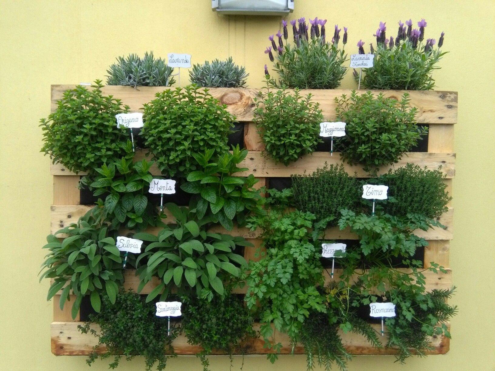 Arredamento Piante ~ Plant pallet con piante aromatiche plant pallet