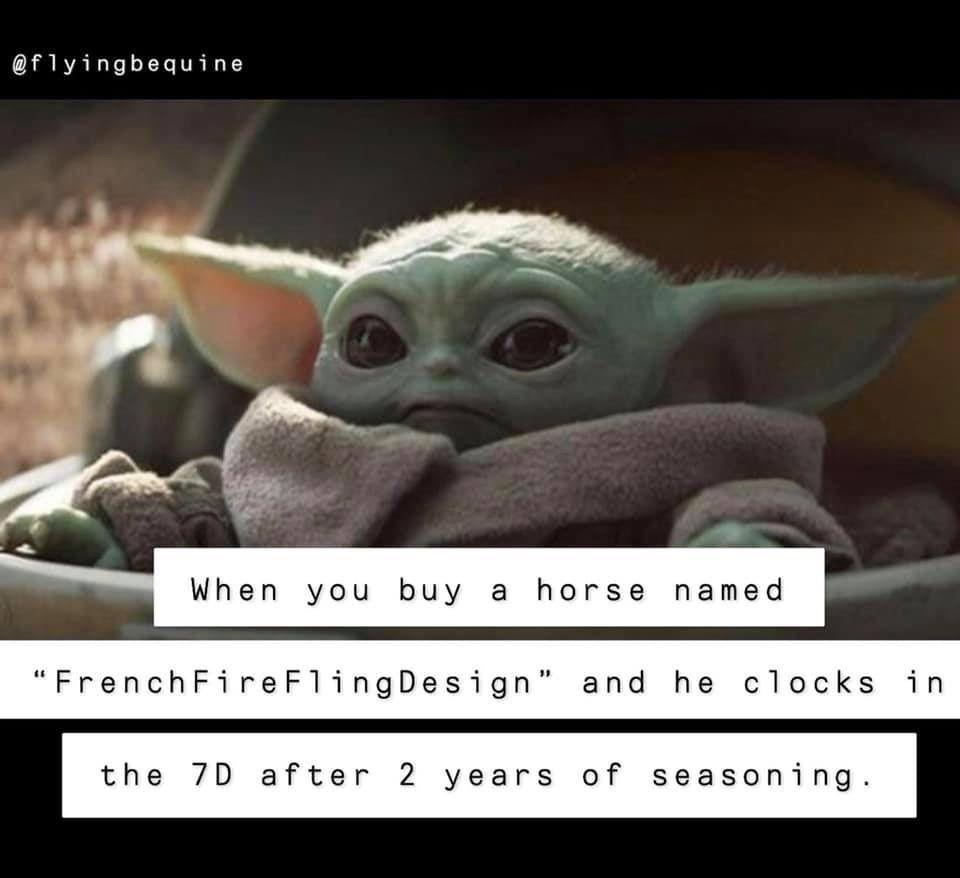Pin By Indira Gavarrete On Baby Yoda Horse Meme Horse Names Buy A Horse