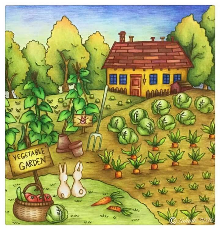Romantic Country Coloring Book If Youre In The Market For Best Adult Books And Supplies Including Colored Pencils Drawing Markers