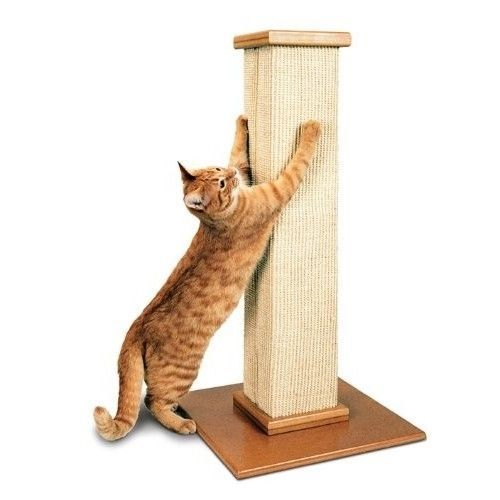 Cat Scratching Post Tower Durable Furniture Post Kitten Play Ultimate Toy Beige #SpecialDeals4U