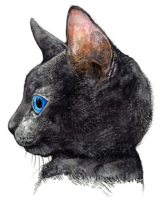 ヒグチユウコさんの猫
