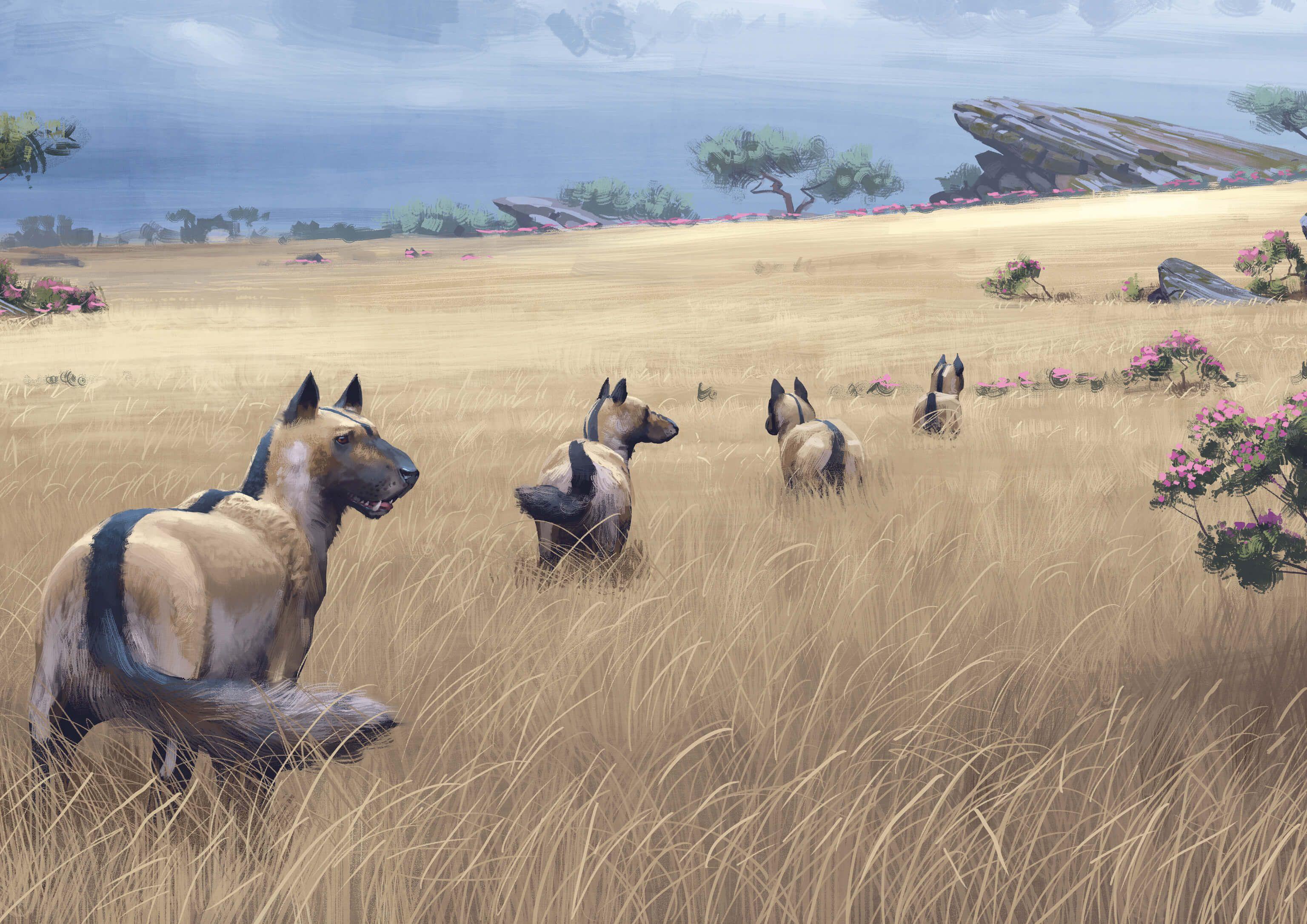 indian rhinoceros Hľadať Googlom (With images