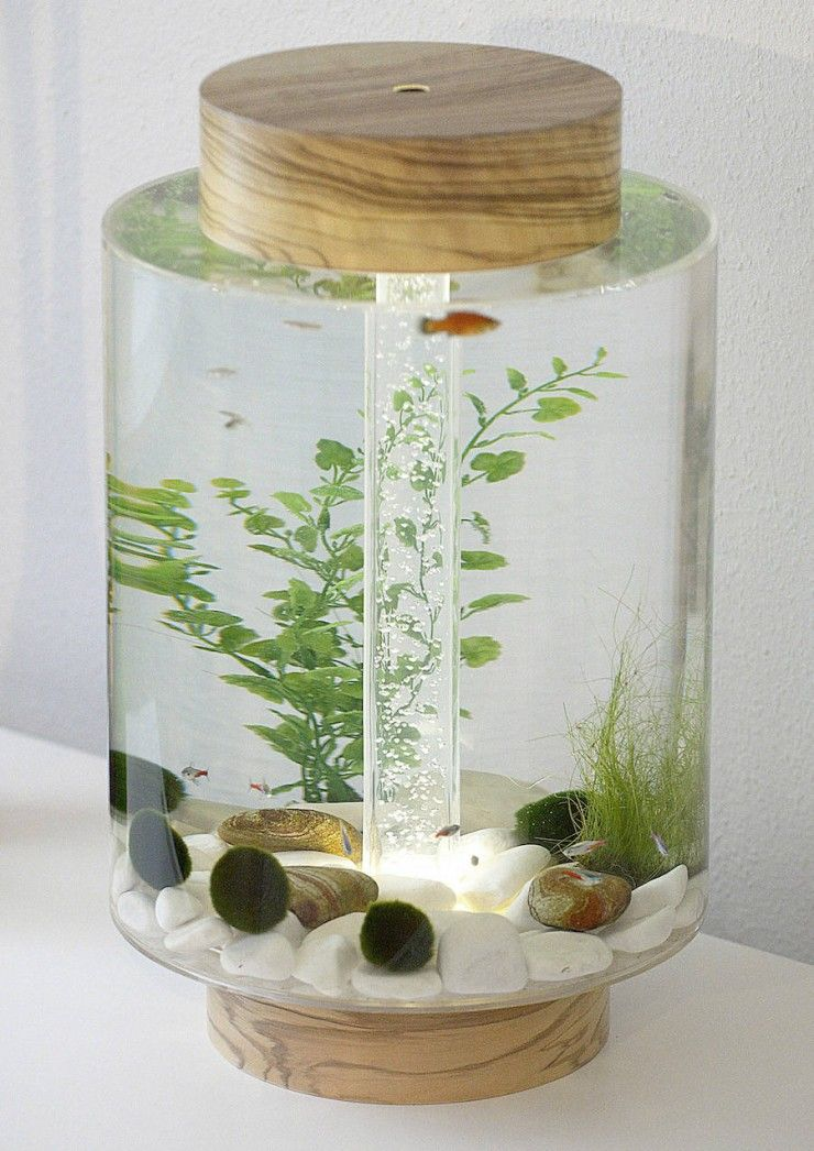 39 norom 39 a minimalist cylindrical shaped aquarium by for Cylindrical fish tank