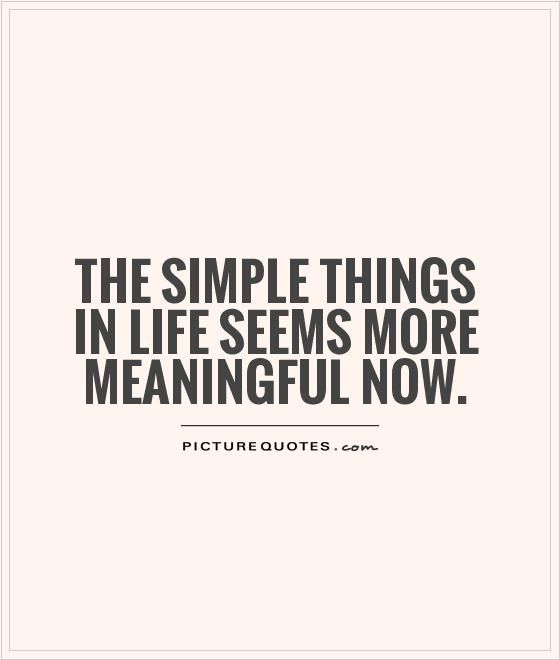 Simple Life Quotes: The Simple Things In Life Seems More Meaningful Now