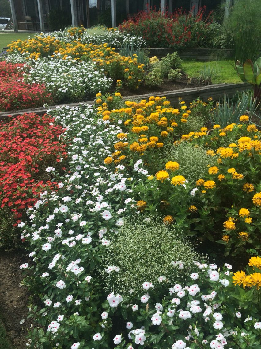Moore Farms Annuals Tour