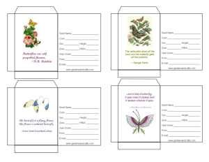 Seed Packet Templates To Package Or Give Away Your Own Saved Seeds