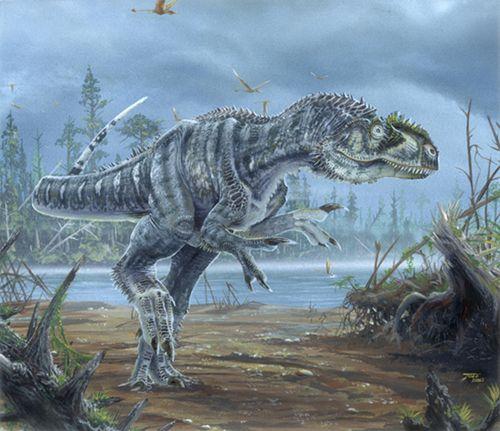 #Allosaurus #dinosaur #theropod