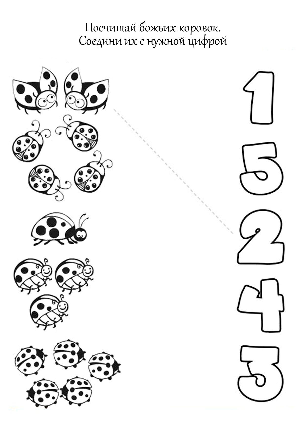 worksheet Ladybug Counting Worksheet