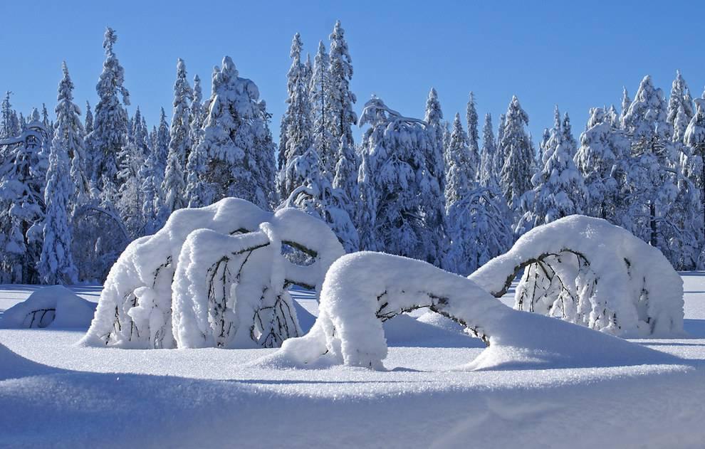 31 photos qui prouvent que la vie en Norvège est un véritable conte de fées #fondecranhiver