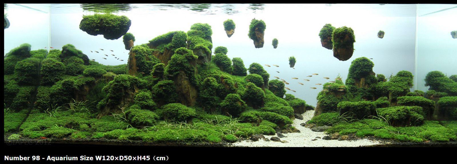 Image result for avatar aquarium