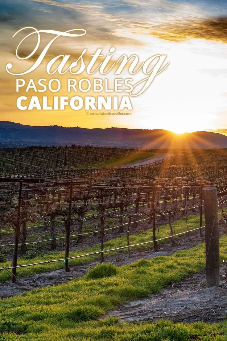 We travel, explore, sample and taste Paso Robles California. Home to over 200 wineries and is the the fastest growing wine country in California.   #travel #California #PasoRobles #wine #USA
