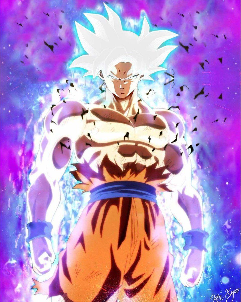 Mastered Ultra Instinct Goku Dragon Ball Goku Dragon Ball Super