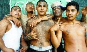 mexican-gang EL PUNKO'S