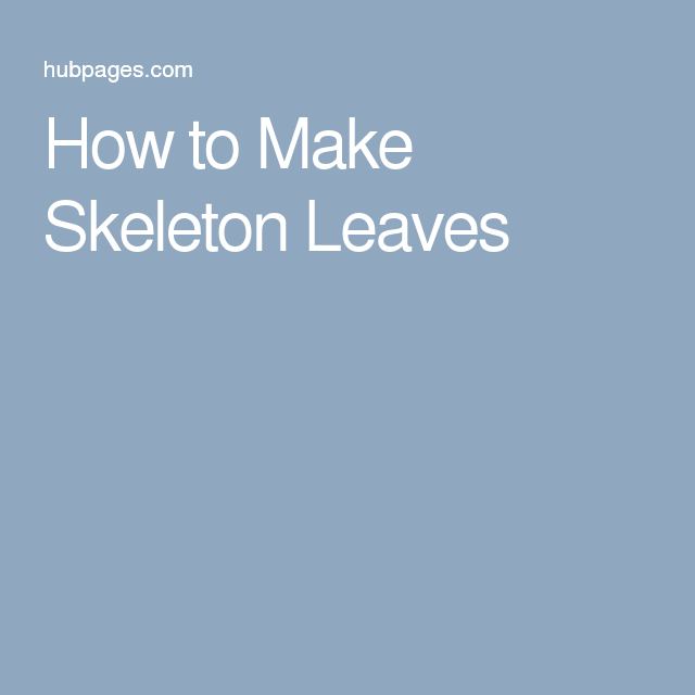 How to Make Skeleton Leaves