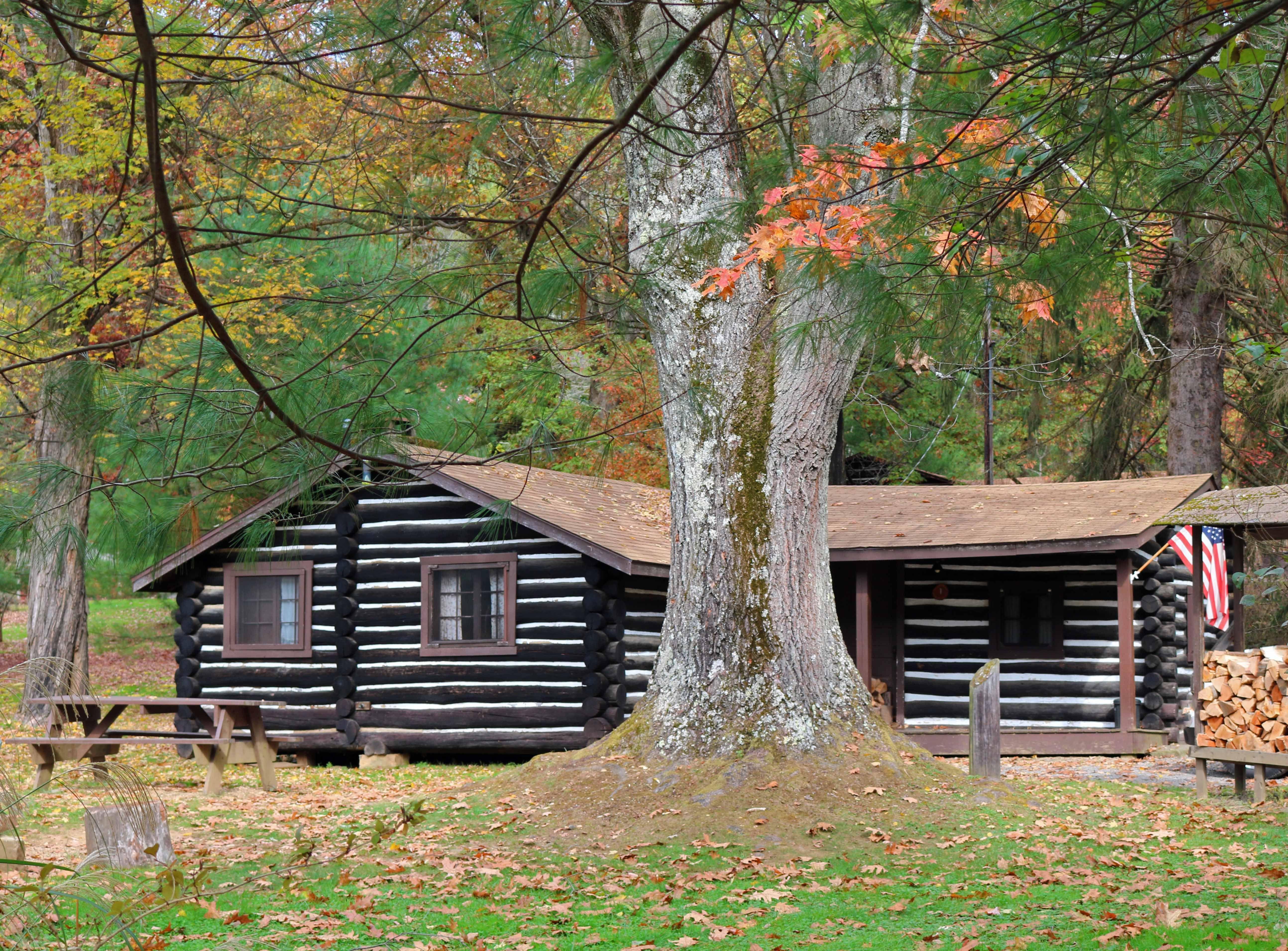 Cook Forest Log Cabin Rental Nov 1 3 Log Cabin Rentals Cabin Cabin Rentals