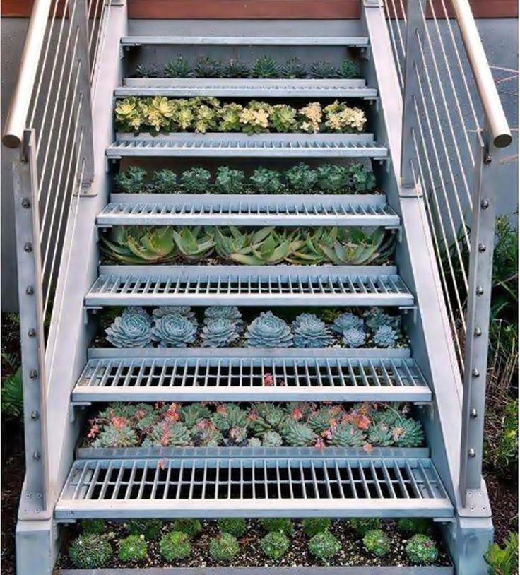 escalera de exterior con jardinera de cactus