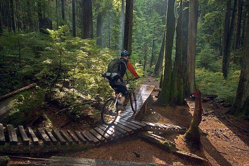 Mountain Biking On The North Shore Bcpassport Bike Trails Mountain Biking Mountain Bike Trails