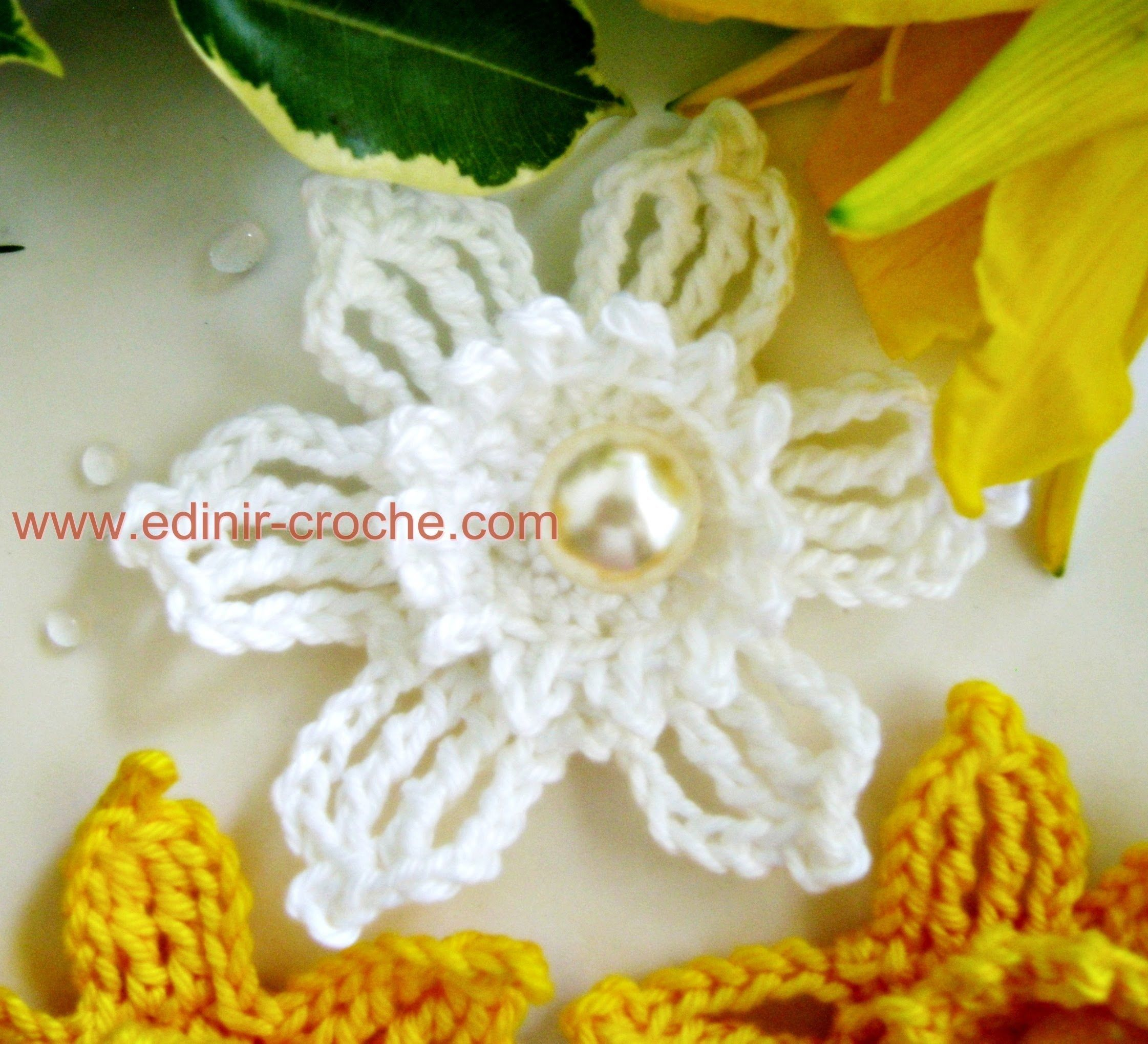 Flores Em Crochê 066 - Flor Narciso Silvestre Fios Duna da Circulo ...