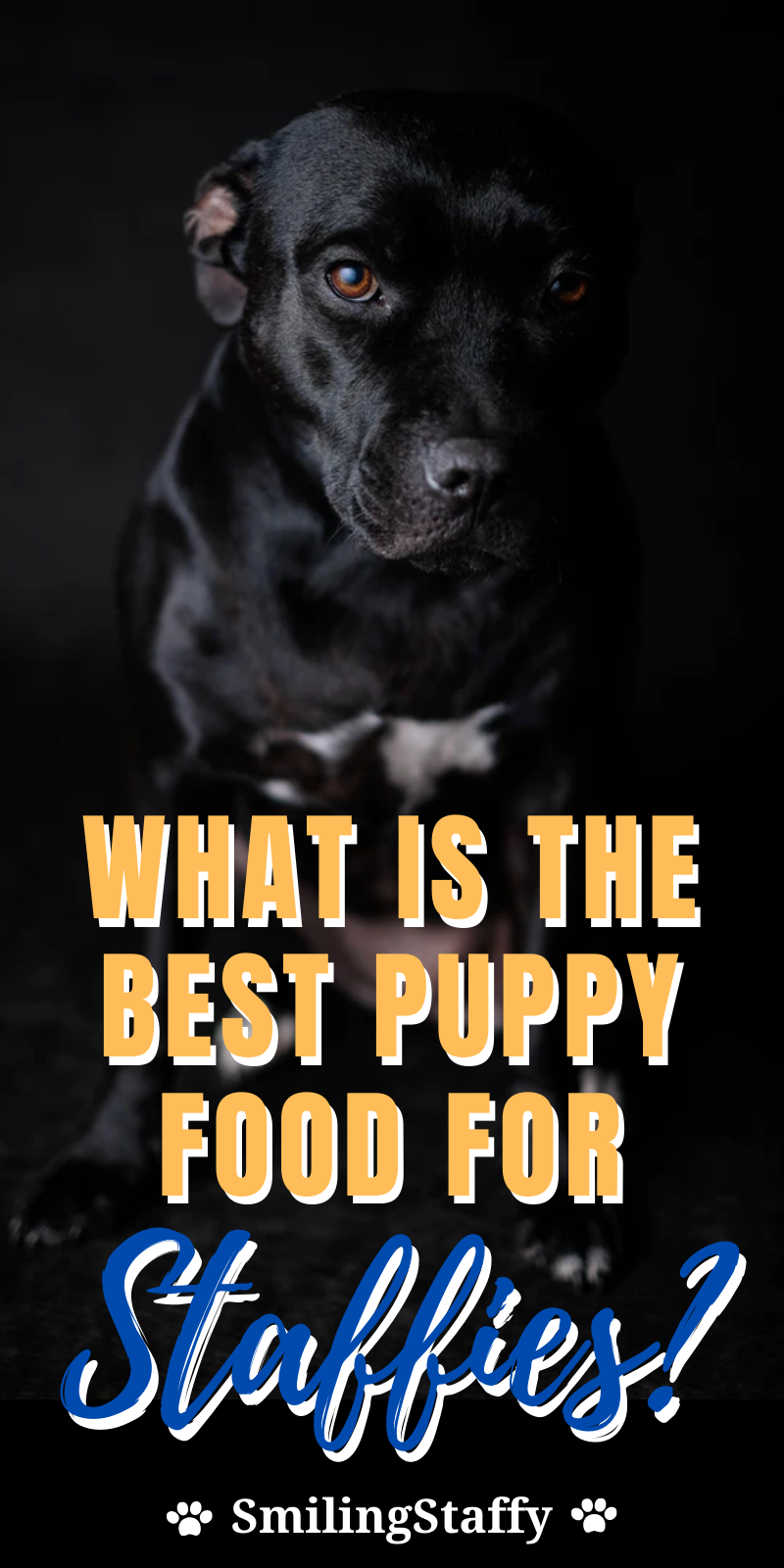 What Is The Best Puppy Food For Staffies In 2020 Best Puppy Food Best Puppies Puppy Food Reviews