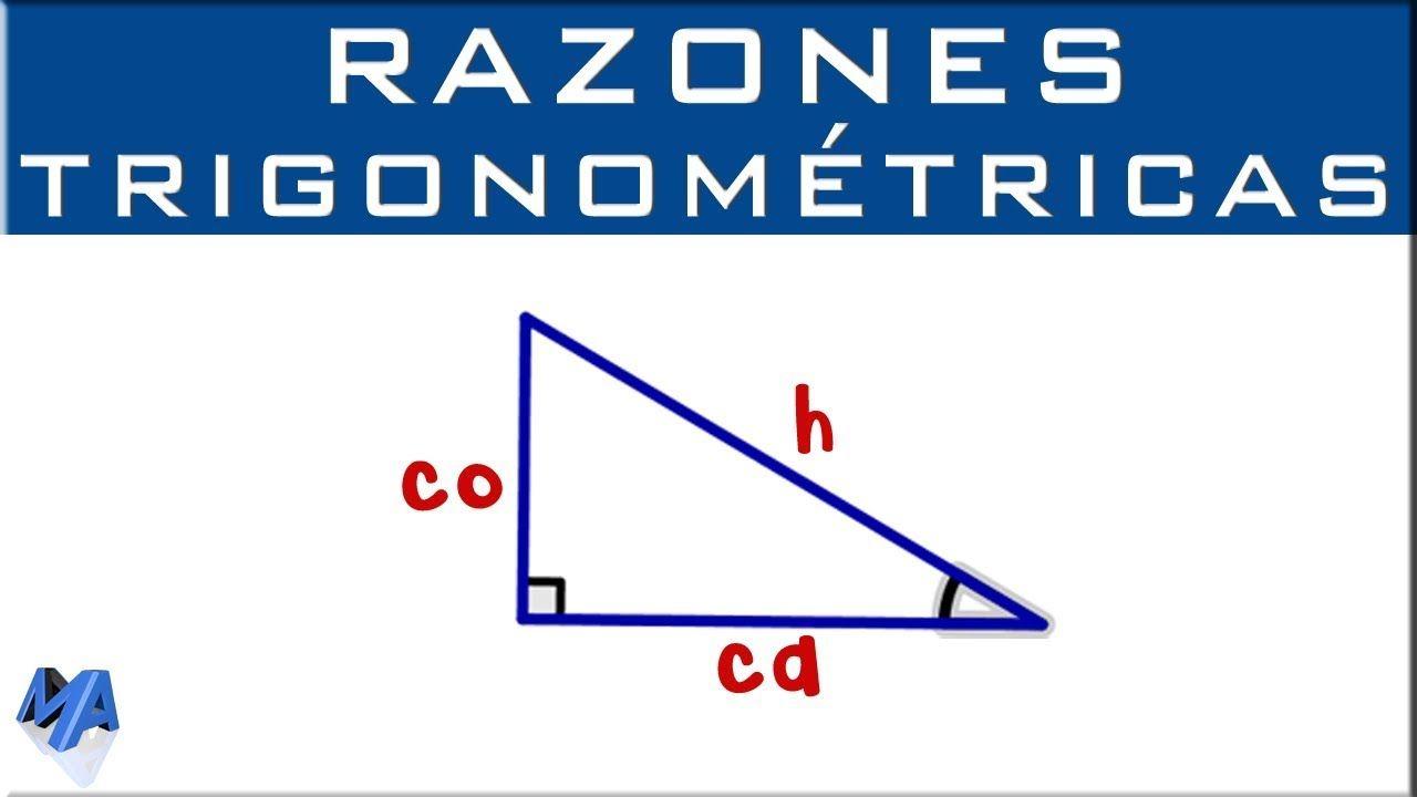 Cateto Opuesto Cateto Adyacente E Hipotenusa Ubicar Correctamente Razones Trigonometricas Fórmulas Matemáticas Funciones Trigonométricas