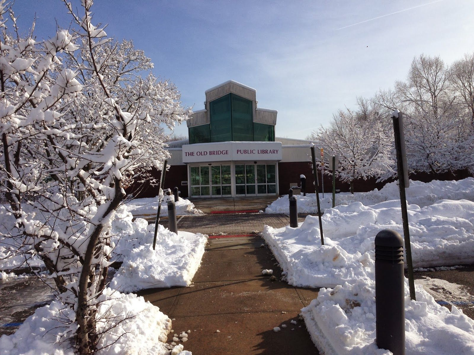 Online Resources from Old Bridge Public Library | Snow Day Survival