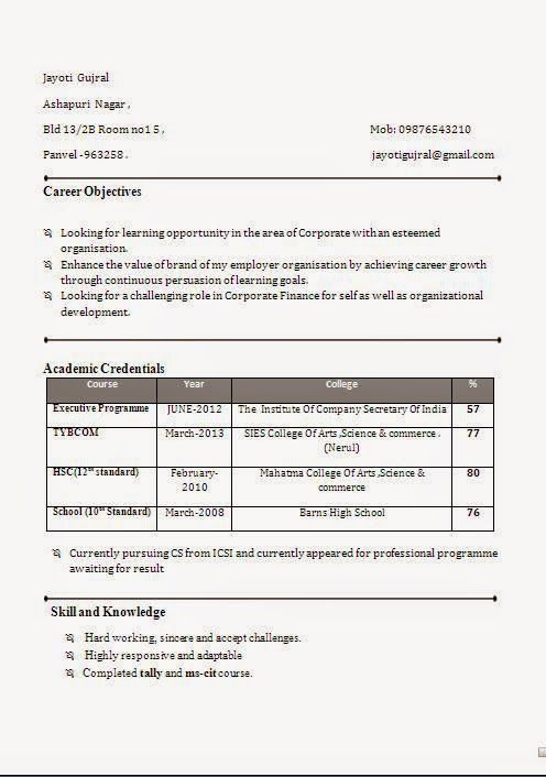 Example Resume Profile Sample Template Example Ofexcellent