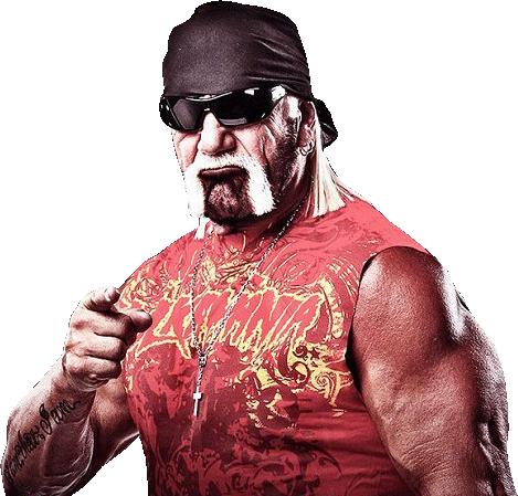 Hulk Hogan Png Google Search Hulk Hogan Hulk Image
