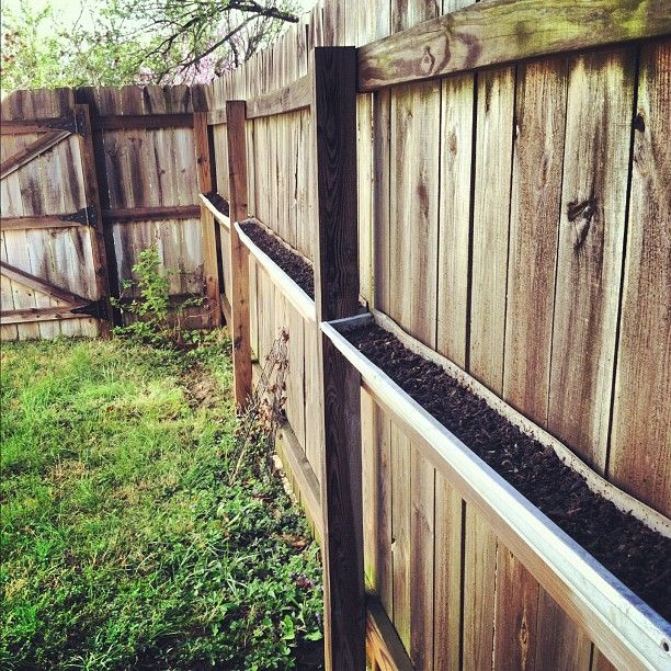 Herb Garden On Fence: Gutter Gardens Are Hung And Full Of