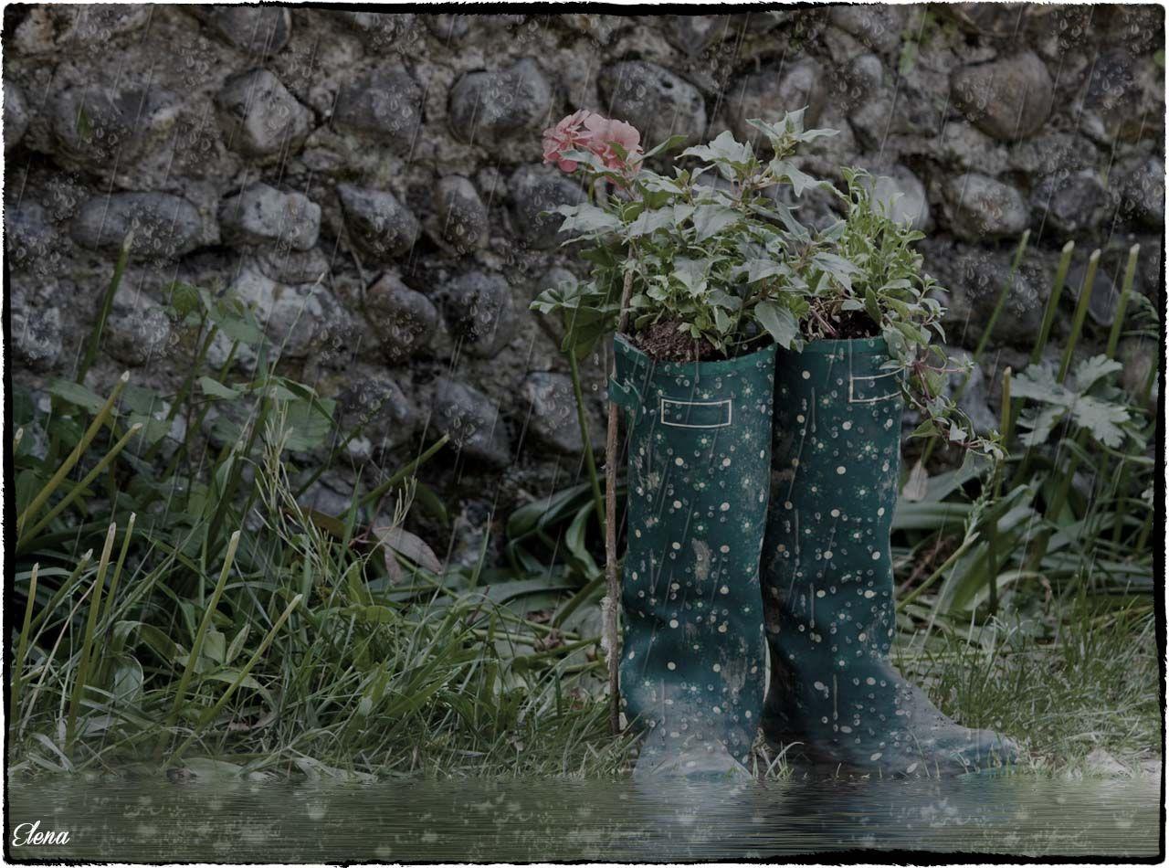 imagen, diseño gráfico, fotomanipulación, agua, lluvia