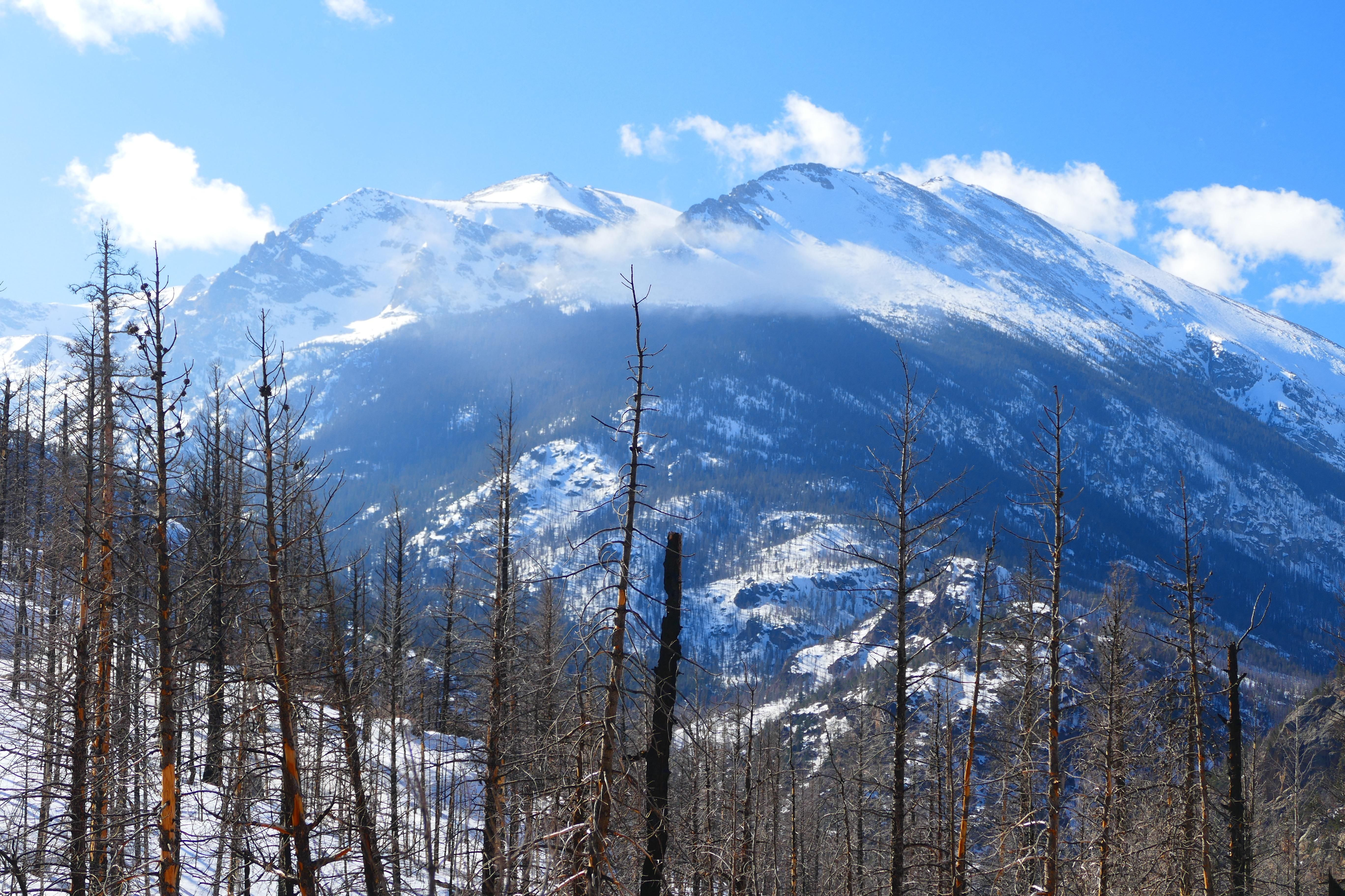 Gettinu the blues at rocky mountain national park oc