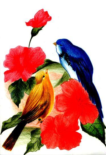 Pássaros Amigos tec usada: Lápis de cor