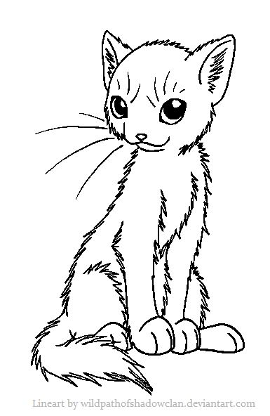 Sitting Pretty Sweet Warrior She Cat Coloring Pages Art Cat