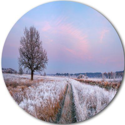 """DesignArt 'Dry Oak Tree in Winter Panorama' Photographic Print on Metal Size: 11"""" H x 11"""" W x 1"""" D"""