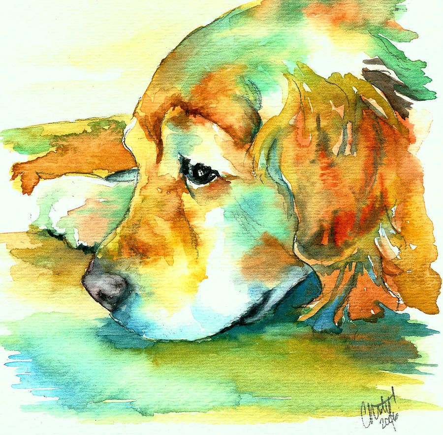 Fine watercolor art for sale - Golden Retriever Profile Painting By Christy Freeman Golden Retriever Profile Fine Art Prints And Posters