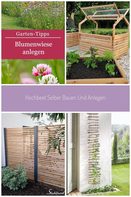 Anleitung Zum Anlegen Einer Blumenwiese Sommer Garten Terrasse